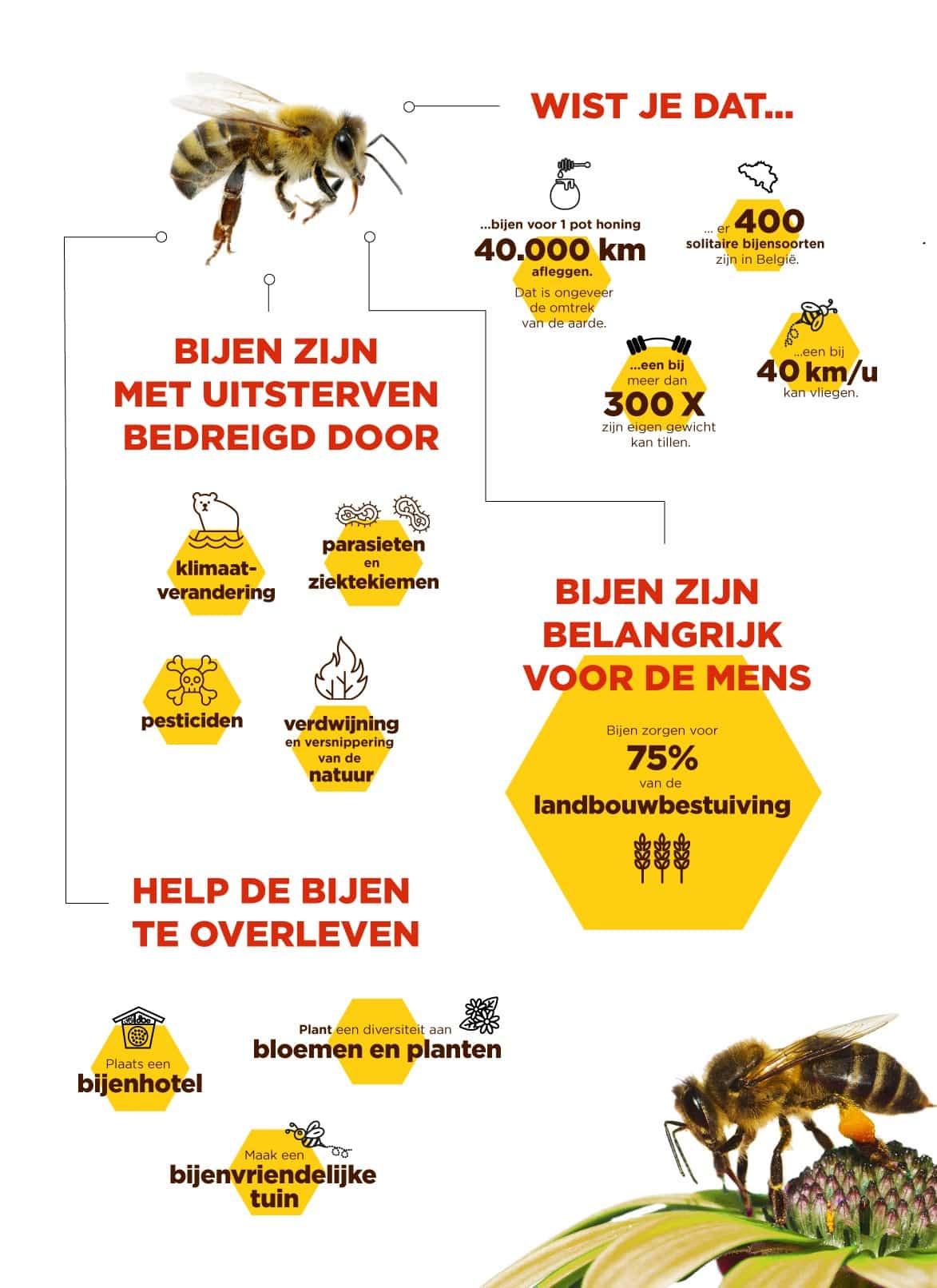 infographic bij
